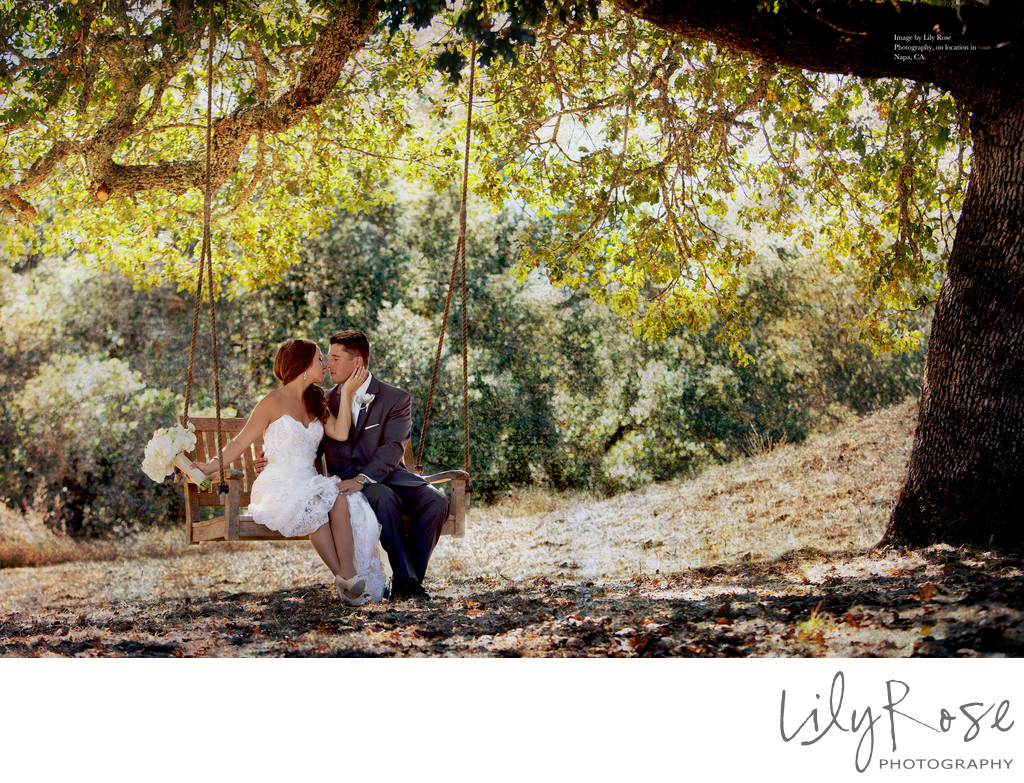 Perfectly Posed Bride and Groom on Swing