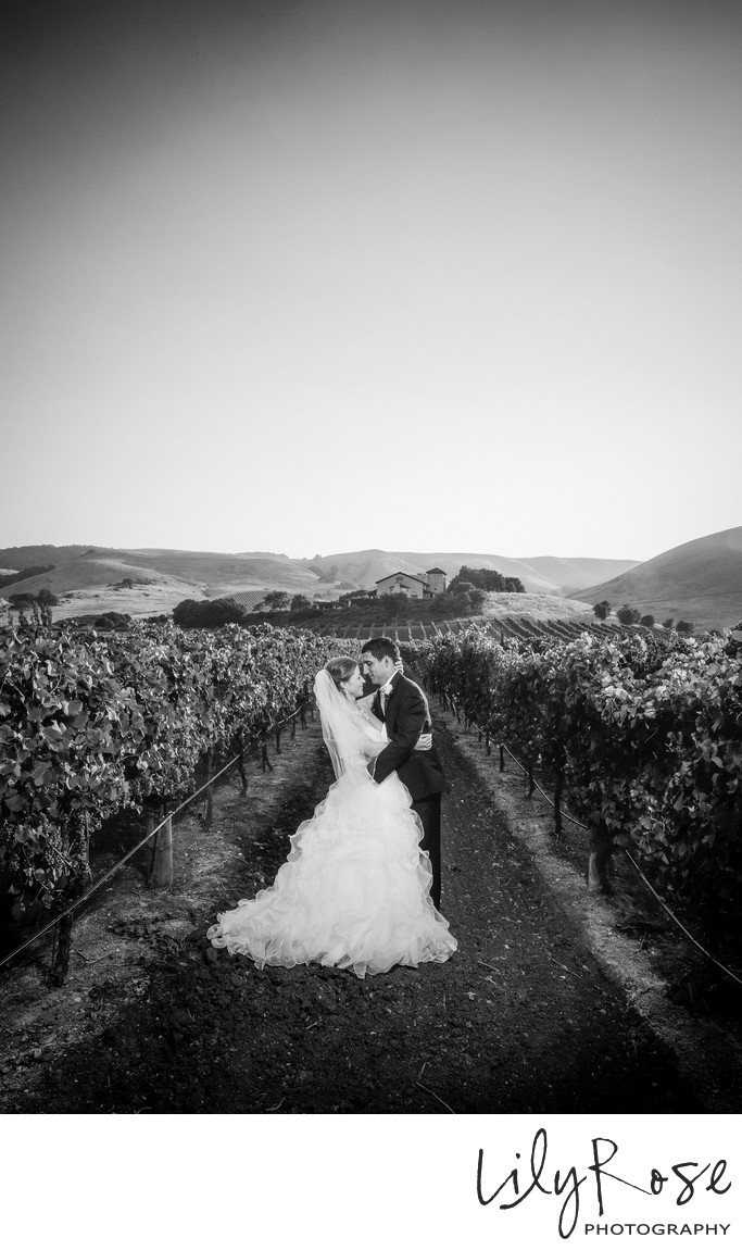 Best Wedding Photographs in Sonoma