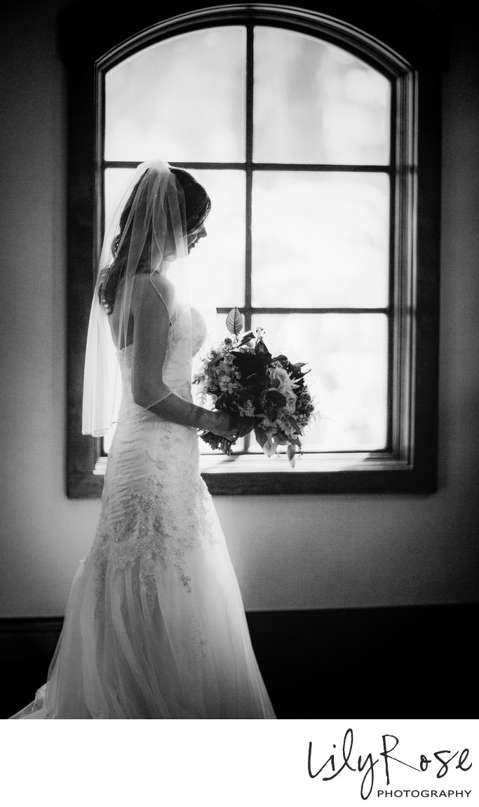 Bridal Portrait Wine and Roses Photographer