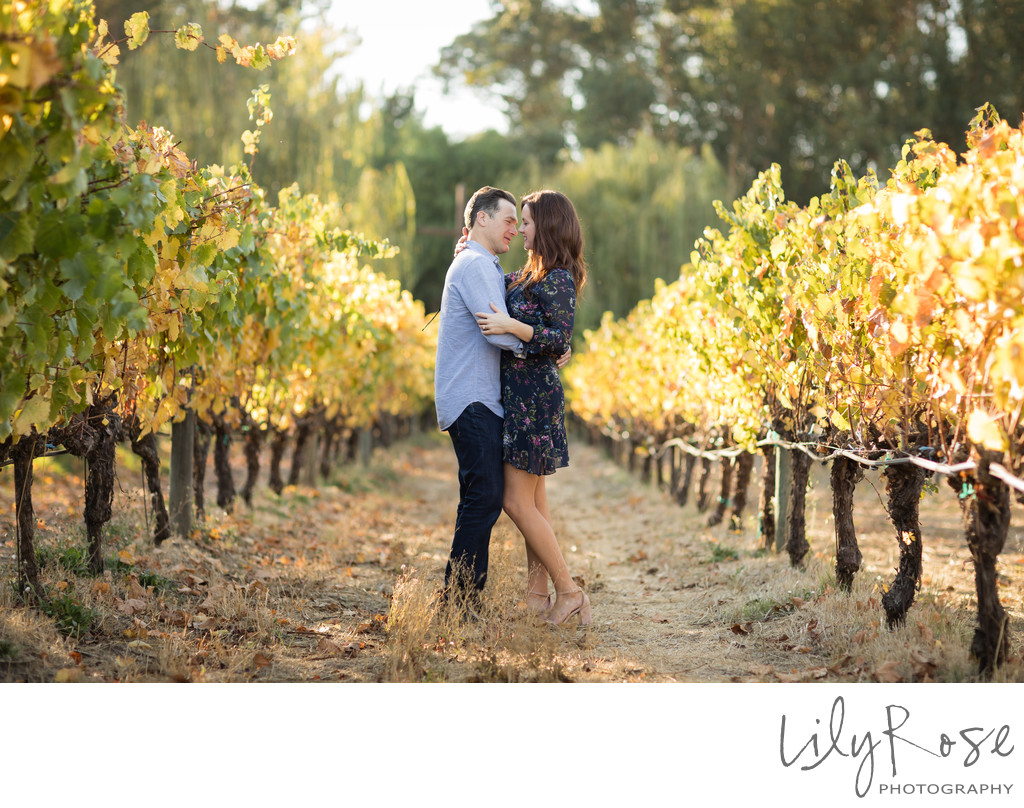 Sonoma Winery Engagement Couple
