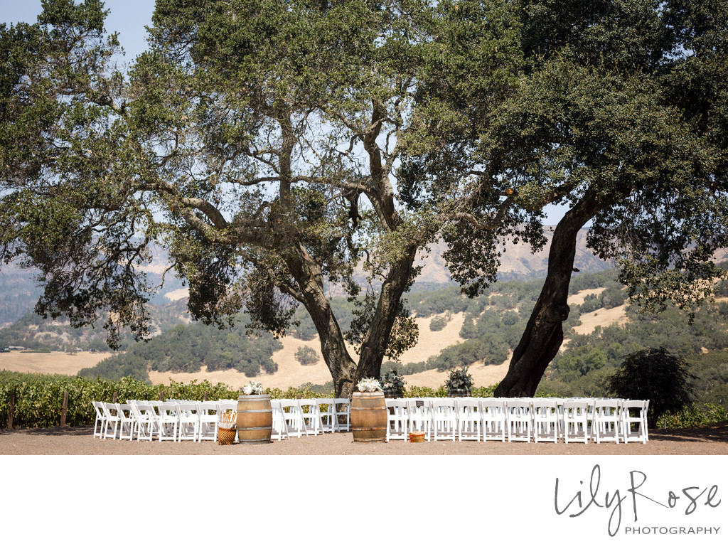 Ceremony Kunde Winery Wedding Photographers Sonoma