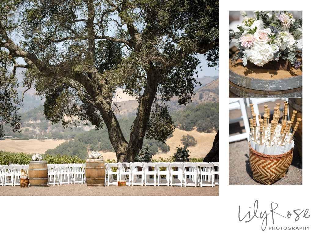 Ceremony Kunde Winery Wedding Sonoma Photographer