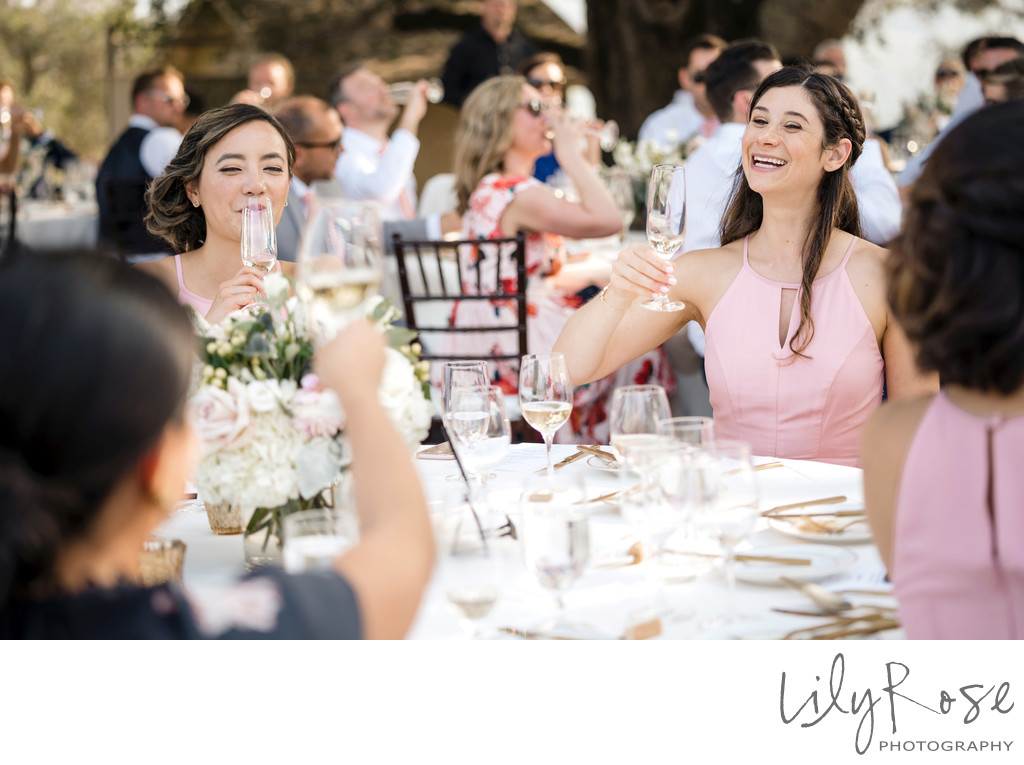 Sonoma Photographers Wedding Kunde Winery Toast