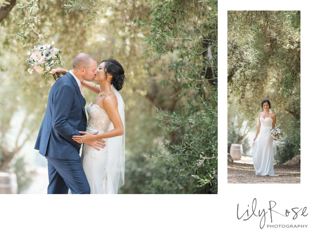 Couple Sonoma Photography Wedding Kunde Winery