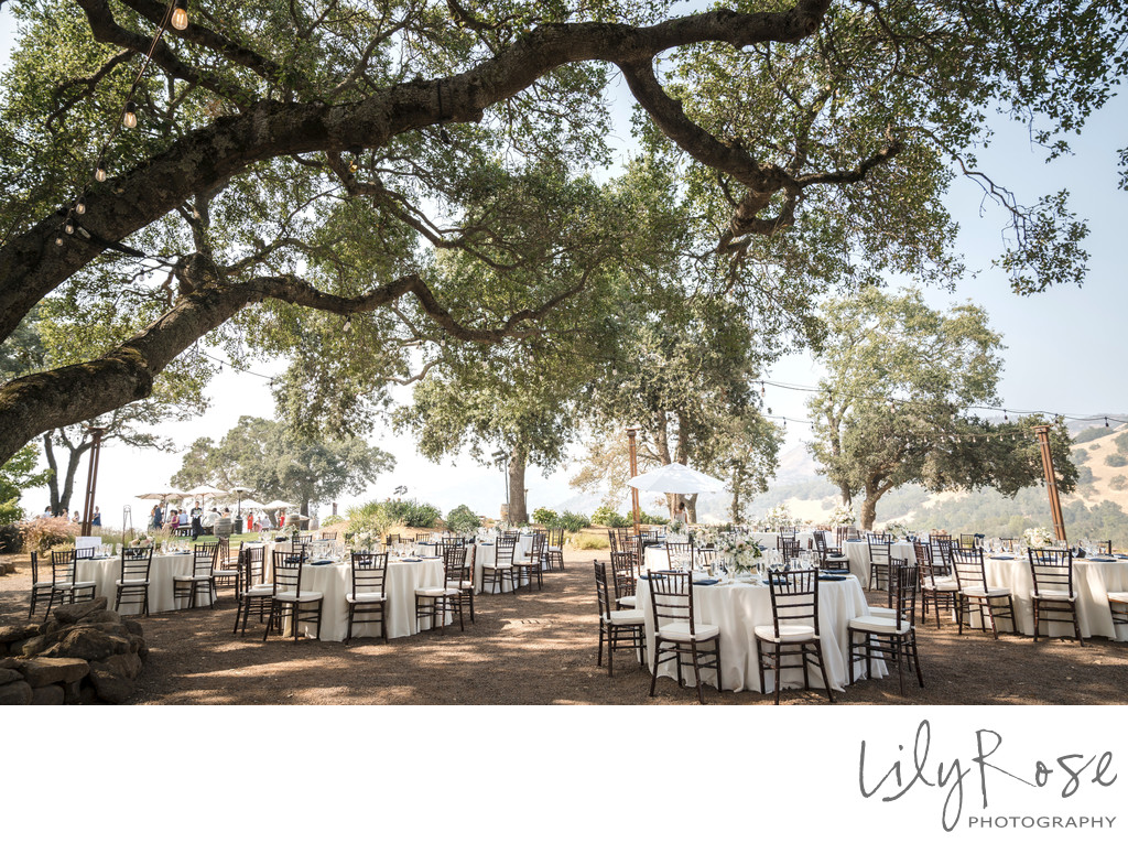 Sonoma Photographer Wedding Kunde Winery Reception