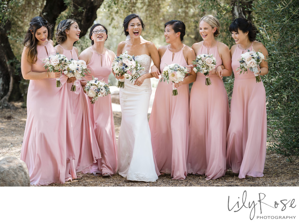 Bridal Party Sonoma Photographers Wedding Kunde Winery