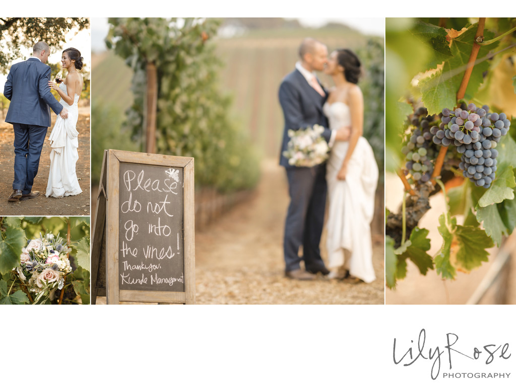 Kunde Family Winery Sonoma Photography Wedding