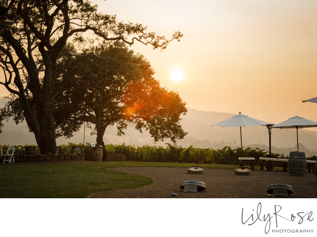 Kunde Family Winery Sonoma Photographer Wedding Sunset