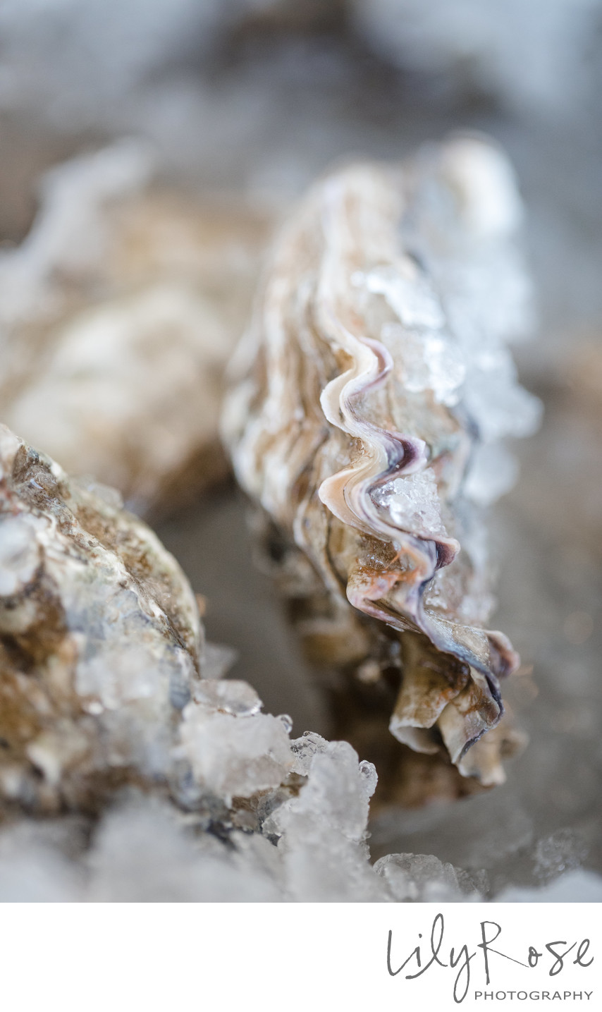 Oyster Detail at a Wedding Reception