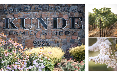 Kunde Winery Wedding Photographers