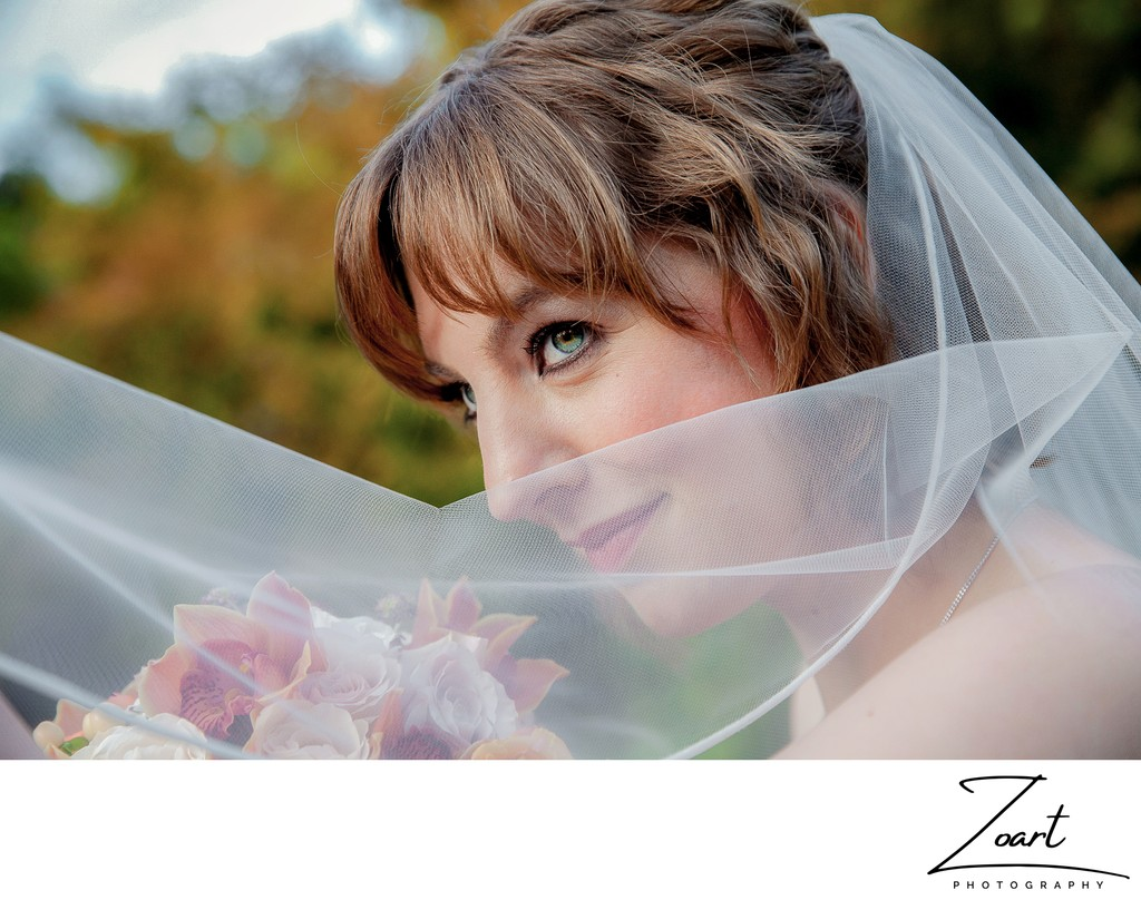 Beautiful Bride with Veil Sacramento Wedding Pictures