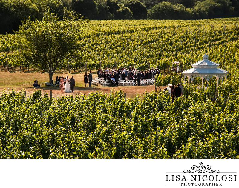 Pellegrini Vineyards Wedding Ceremony Photo