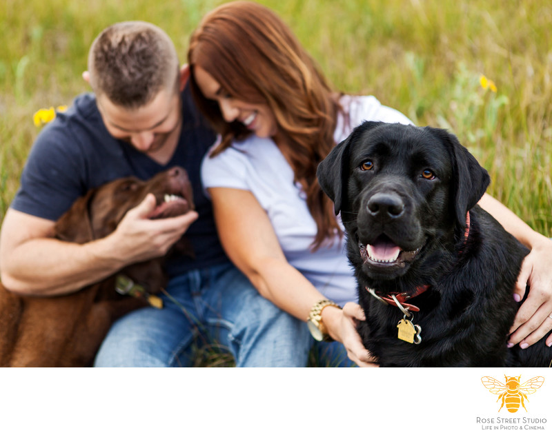 Engagement Session with Dogs