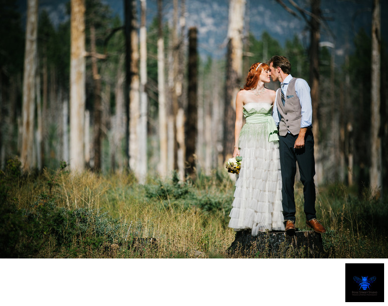 Top Wedding Photographers in Lake Tahoe