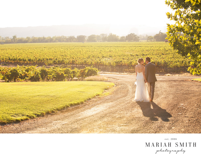 Healdsburg Vineyard Best Wedding Photography