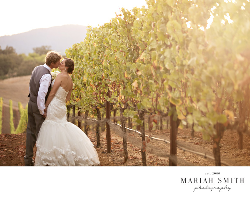 Top Winery wedding photographer in Healdsburg