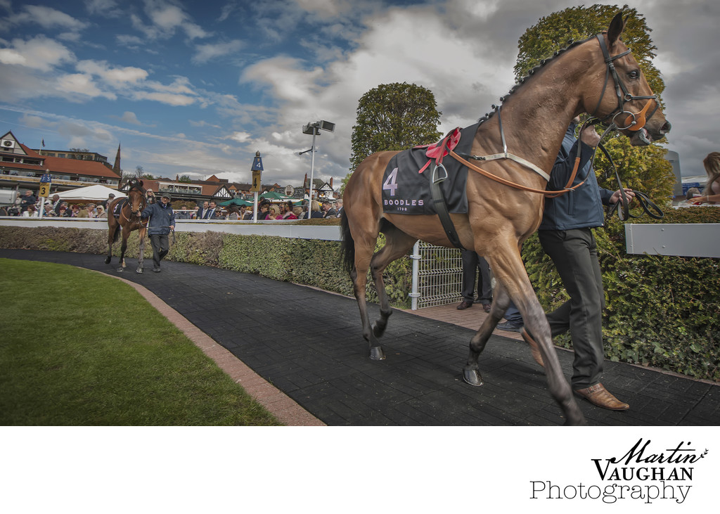 The Paddock photographs at chester races