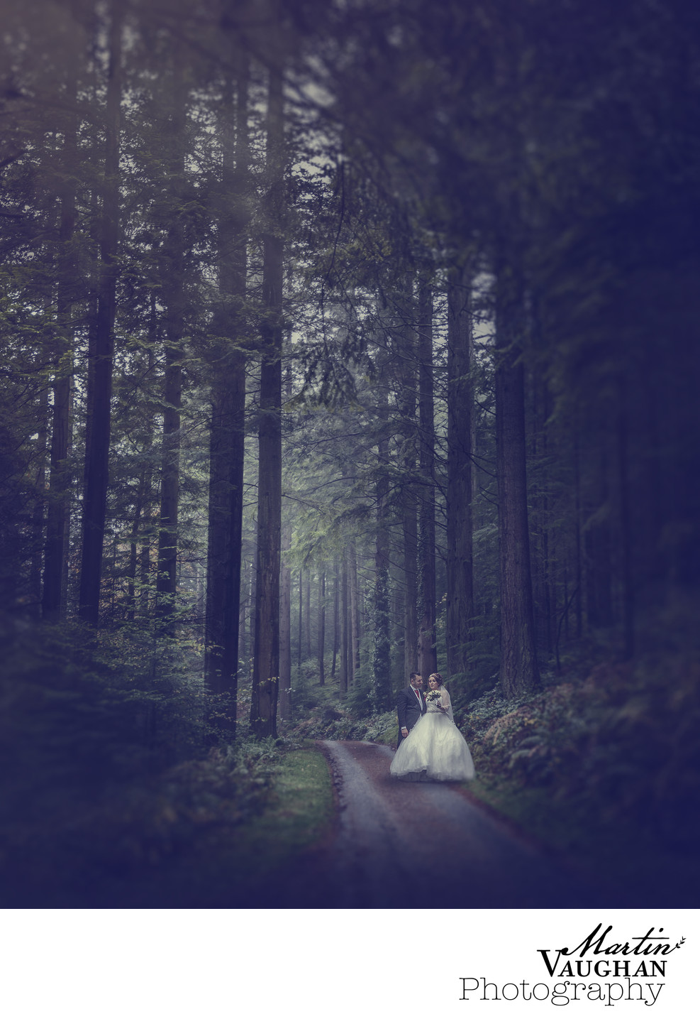 North wales wedding photography deep in the forest