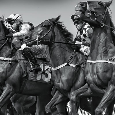Chester Racecourse photographs by Martin Vaughahn