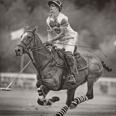 Polo images at Chester Racecourse