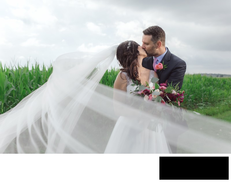 chicago high end wedding photographer amy aiello photography bride and groom in field dramatic romantic photo cathedral veil emerson creek pottery and tea room wedding