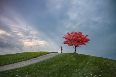chicago wedding photographer fashion inspired magazine amy aiello photography bride and groom