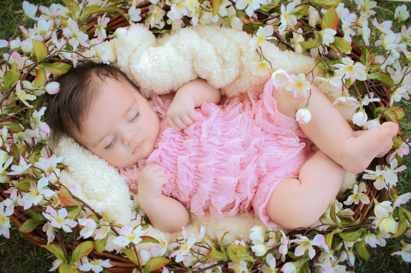 Baby Girl in Basket with Pink and White Flowers