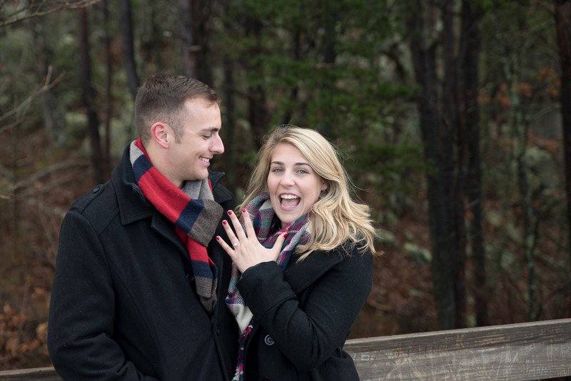 surprise proposal fort mountain