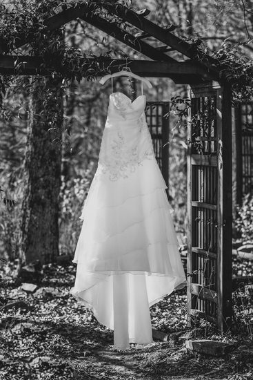 The Wedding Dress In Black and White