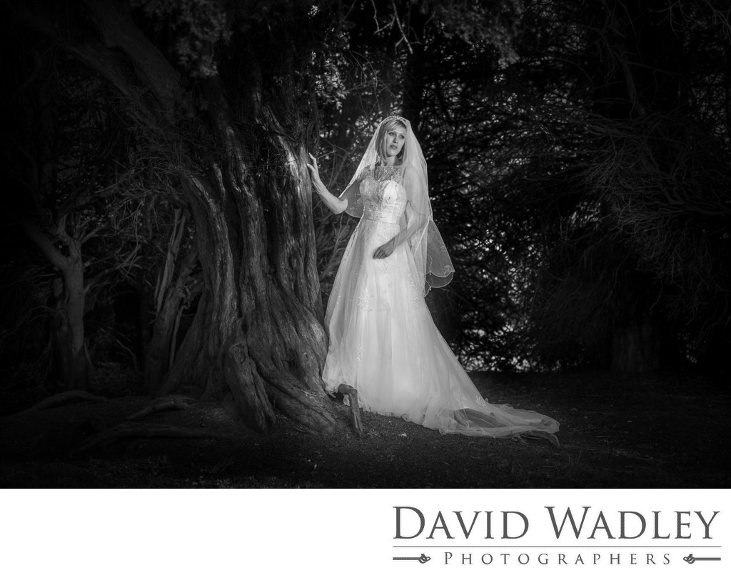Swinfen Hall Hotel Bride on her Wedding day.