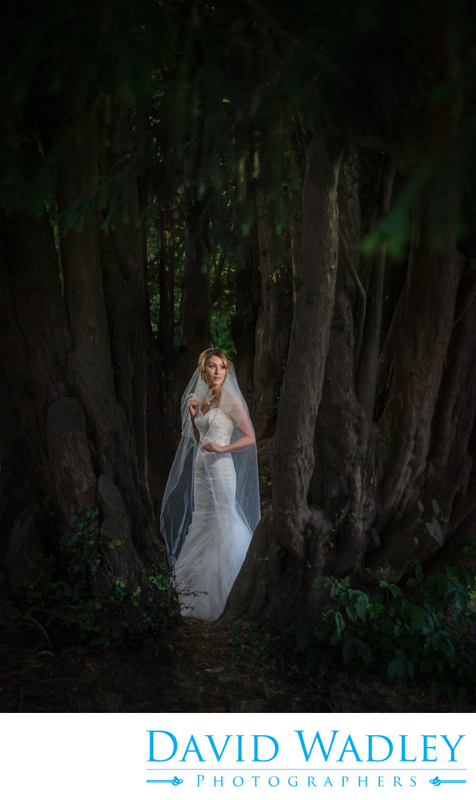 Bride in forest at Nailcote Hall.