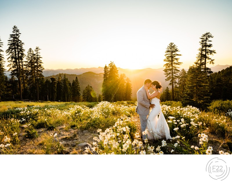 Lake Tahoe Wedding Photographer: Sunset