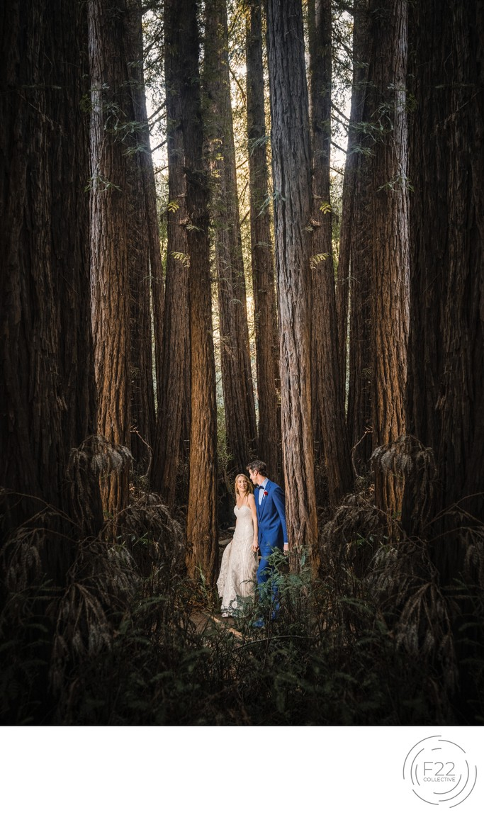 Couple in Redwoods Best Wedding Photography Sacramento
