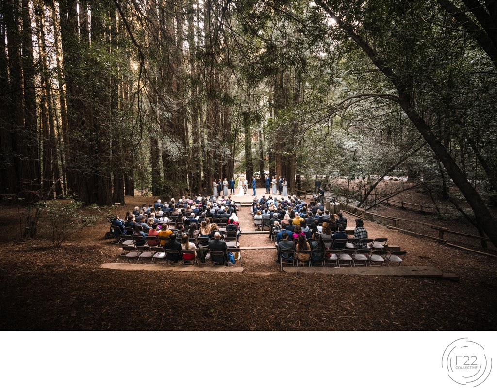 Ceremony Redwoods Best Wedding Photographer Sacramento