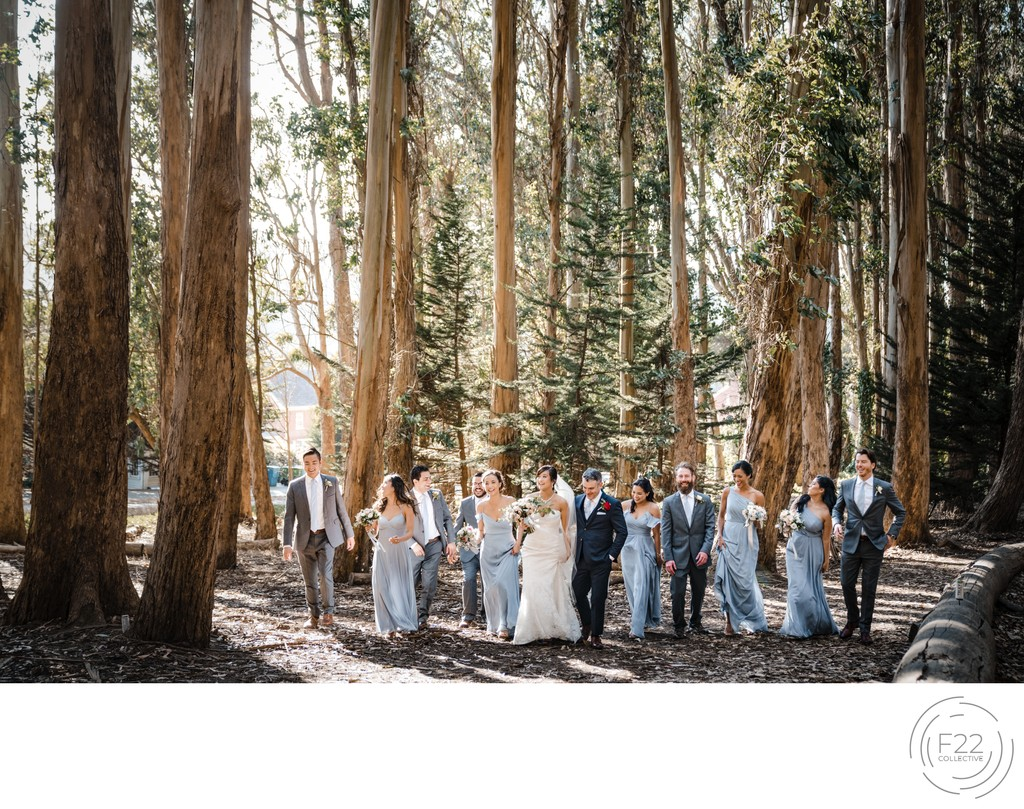 Wedding Party Wedding Photographers Sacramento