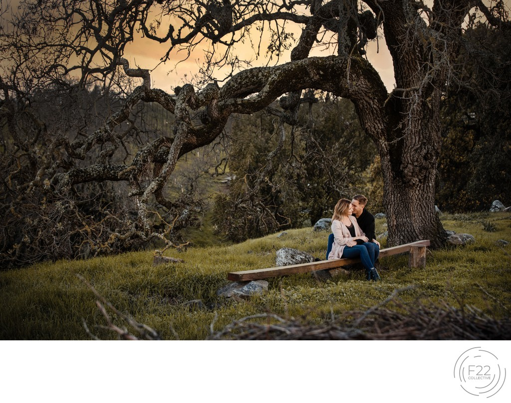 Sacramento Wedding Photographers Sunset Engagement