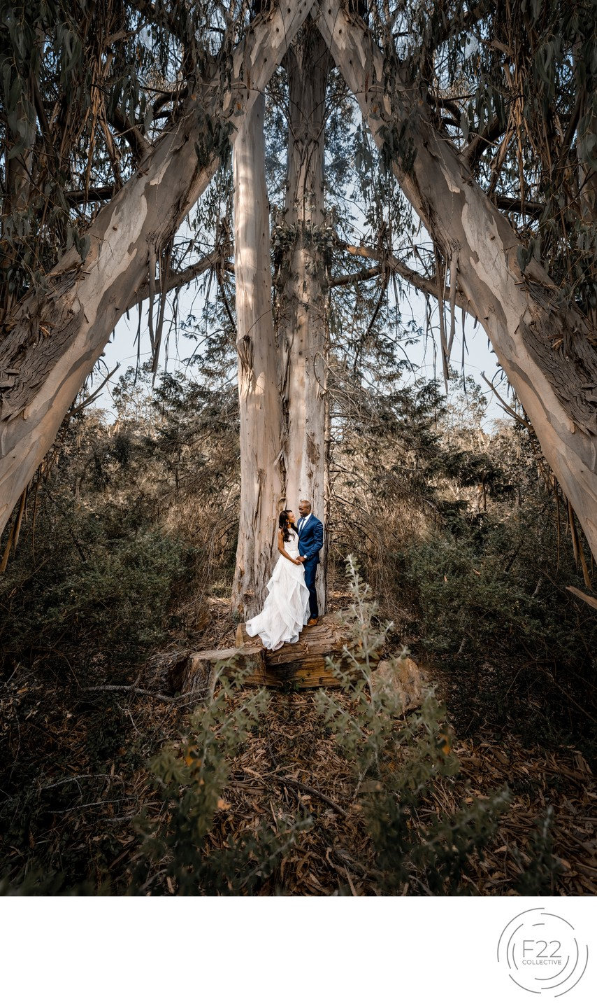 Best Wedding Photographers Sacramento Gorgeous Couple