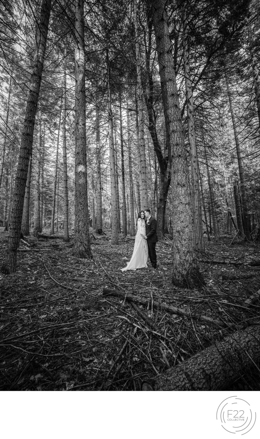 Couple in Forest Best Wedding Photographers Sacramento