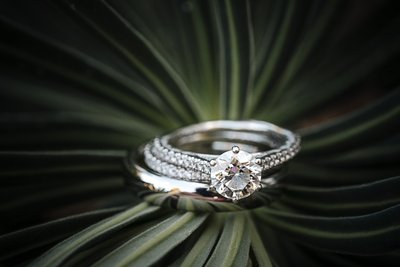 Sacramento Wedding Photographer Styled Wedding Rings