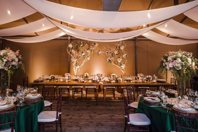 Sacramento Wedding Photographer Reception Ideas