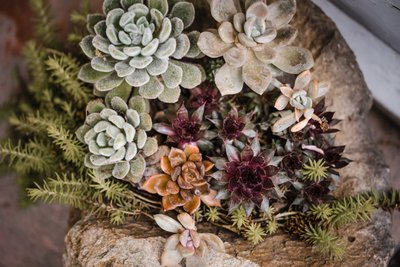 Sacramento Wedding Photographers Venue Succulents
