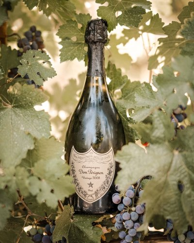 Champagne and Vineyards: Sacramento Wedding Photography