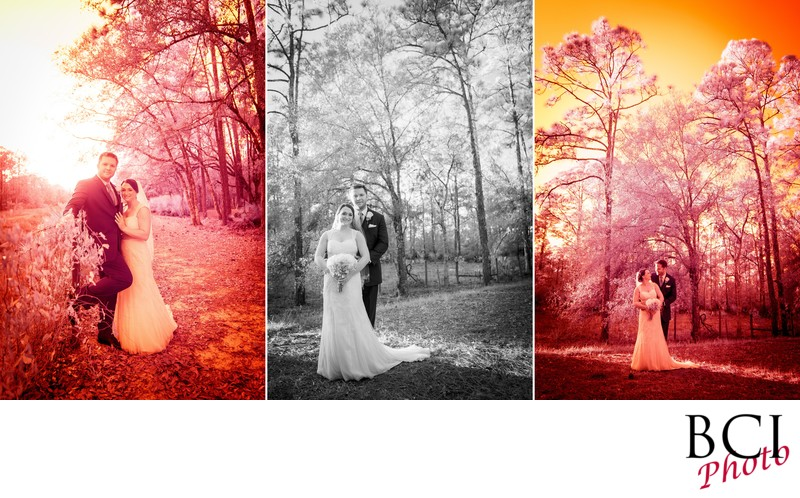 Best wedding photographers in Indian River County