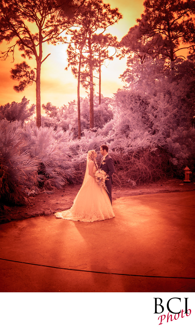 Infrared Wedding Images from Florida