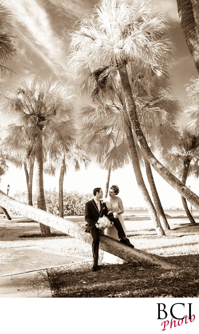 South Florida's best wedding photography company