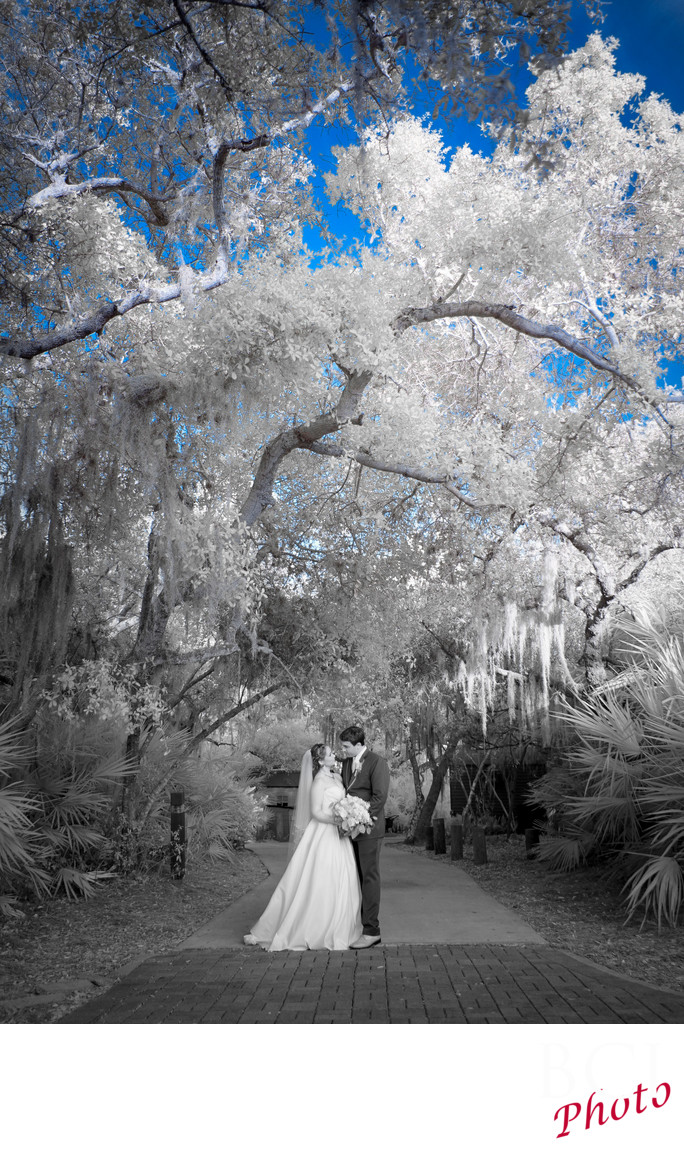 Infrared wedding image from Harbour Ridge.