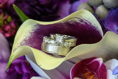 Wedding Rings on a Cala Lilly