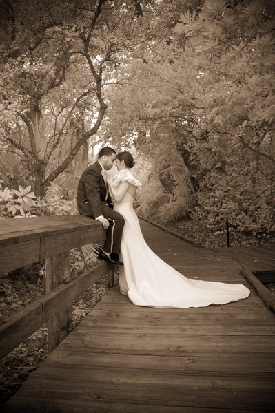 Amazing Wedding Photographers on the Treasure Coast