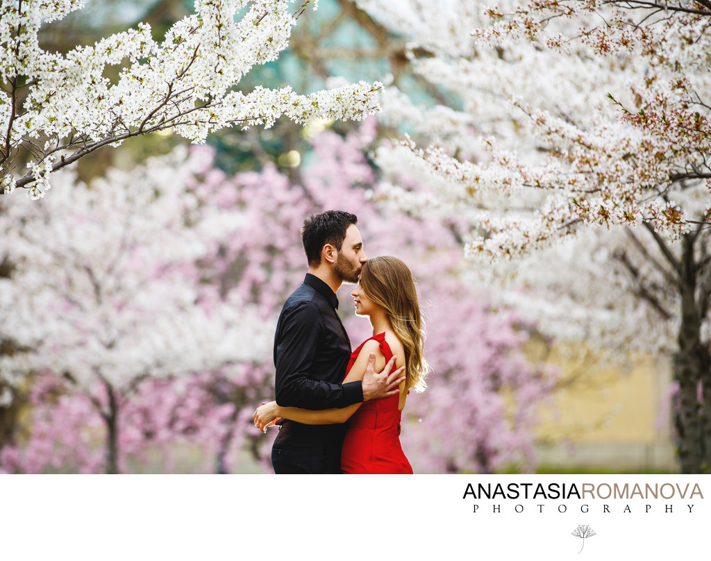 Philadelphia Cherry Blossom Engagement Photos