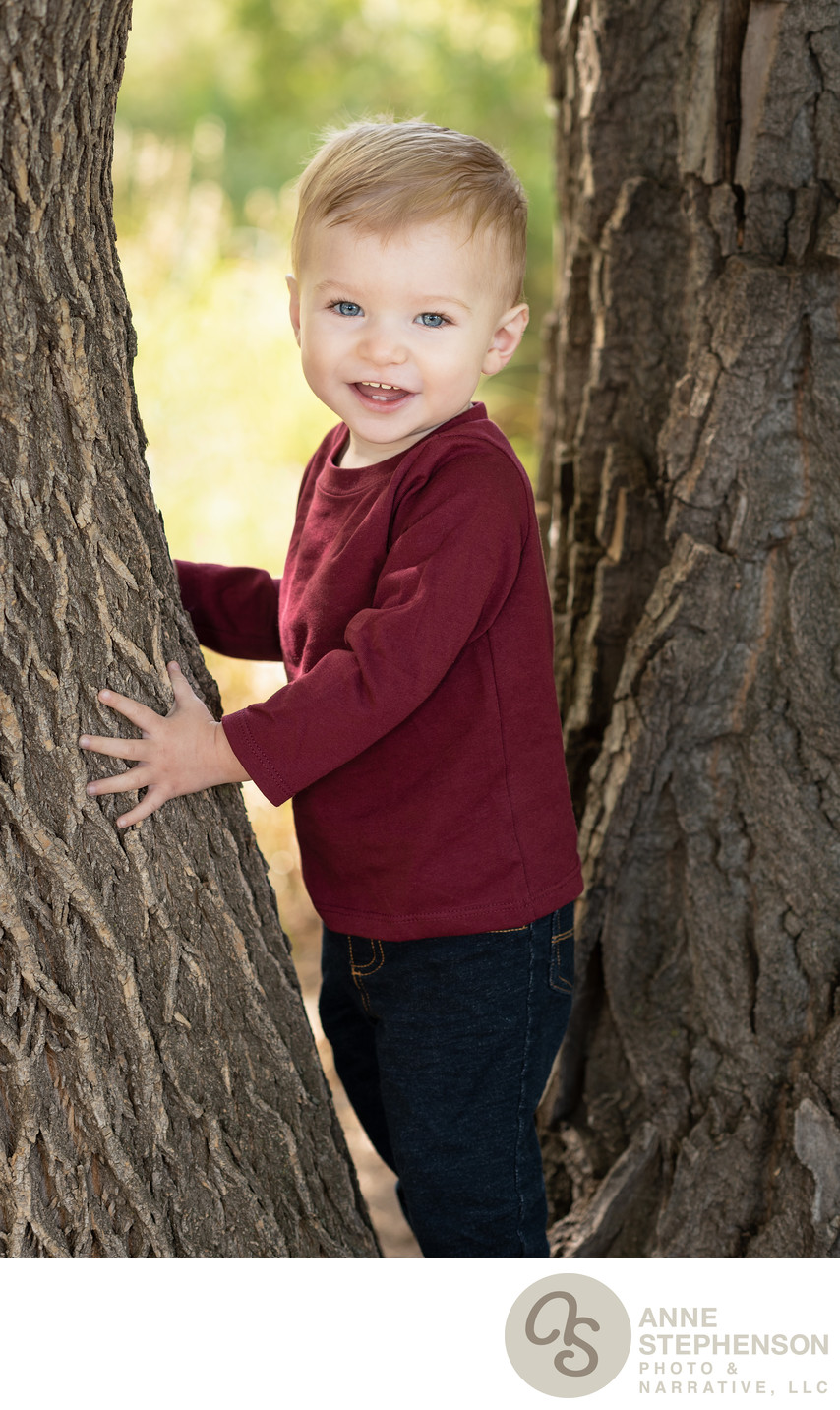 Candid Photo of Toddler Climbing Tree